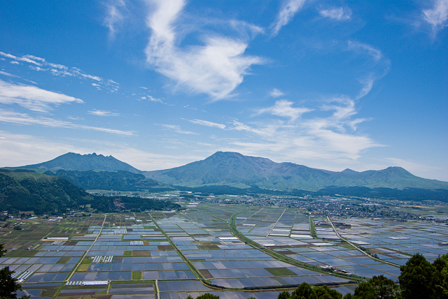 阿蘇五岳と水田