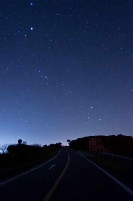 Road to starlit sky.