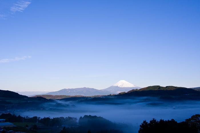 丹那盆地の雲海