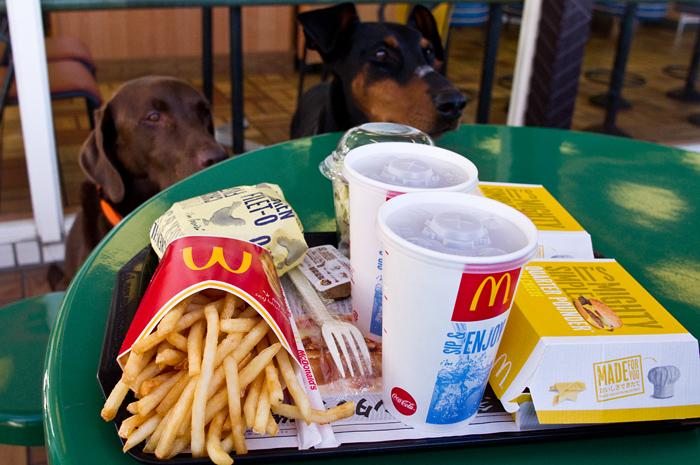 マクドナルドハンバーガーと犬達