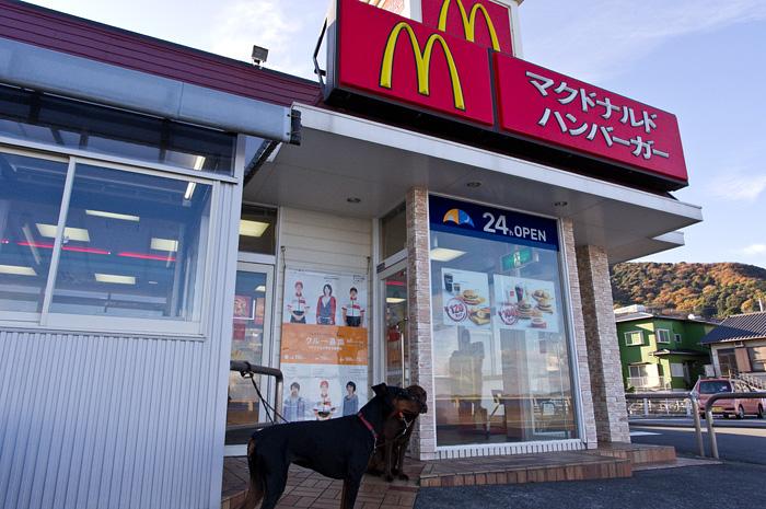 マクドナルド 伊豆下多賀店