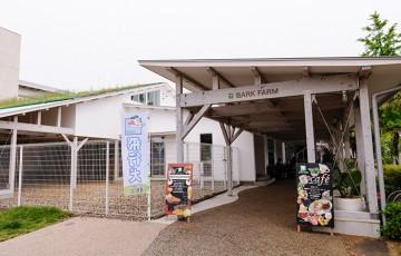横浜バークファーム飛行犬撮影会